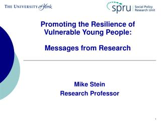 Promoting the Resilience of Vulnerable Young People:  Messages from Research