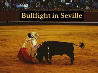 Bullfight in Seville
