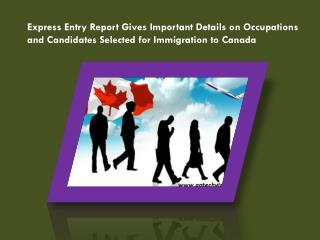 Express Entry Report Gives Important Details on Occupations and Candidates Selected for Immigration to Canada