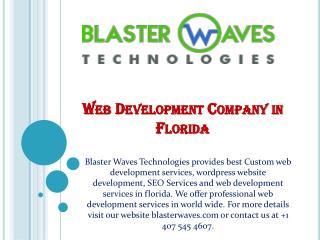 Web Development Company in Florida