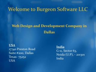 Benefits of hiring Burgeon Software as a professional web designing company in Dallas