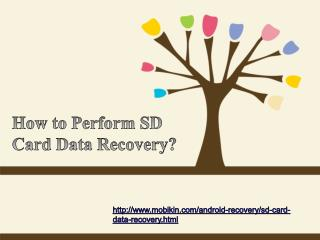 How to Perform Sd Card Data Recovery