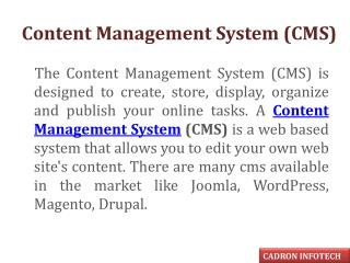 CMS Web Development Company - Cadron Infotech