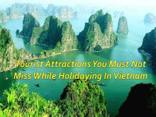 Tourist Attractions You Must Not Miss While Holidaying In Vietnam