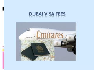 How to apply for a 90 days Dubai visa the right way