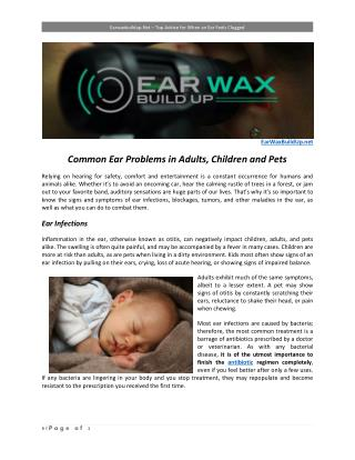 Common Ear Problems in Adults, Children and Pets