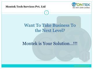Web Development Company in Pune - Montek Services