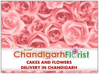 Cakes And Flowers Delivery In Chandigarh