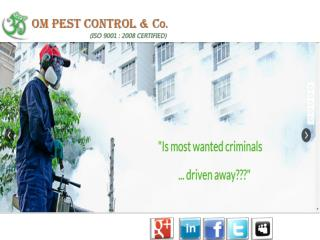 Reliable Pest Control Company Odisha