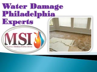 Water Damage Philadelphia Experts