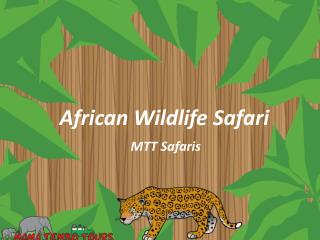 African Wildlife Safari: Insider Secrets for the Photographic Safari