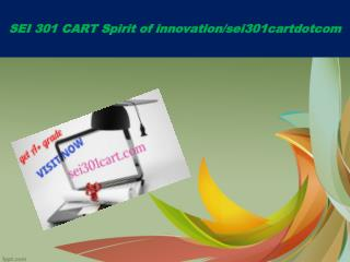 SEI 301 CART Spirit of innovation/sei301cartdotcom