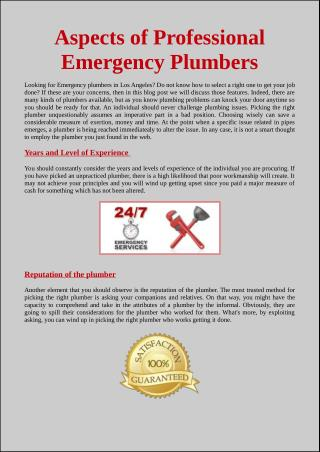 Aspects of Professional Emergency Plumbers
