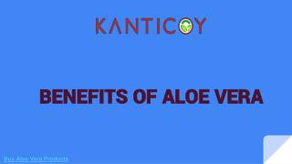 Buy Aloe Vera Products | Benefits of Aloe Vera