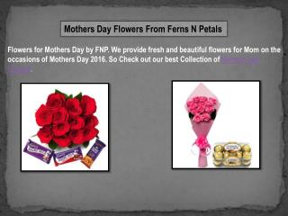 Mothers Day Flowers from Ferns N Petals with Free Delivery Services