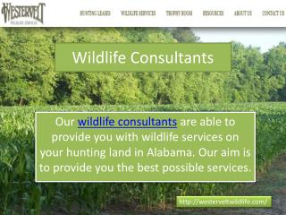 wildlife consultants