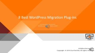 Wordpress Plugins-WP Cutomization Services