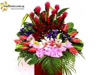 Grand Opening Flowers Online | Starflorist