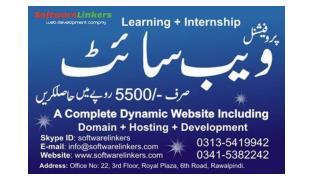 Complete website Domain   Hosting   Designing Rs.5500/-