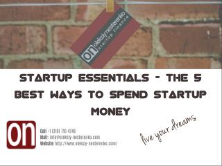 Startup Essentials by Oleksiy Nesterenko