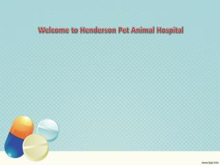 Contact Us for Medical Assistance to Your Pets