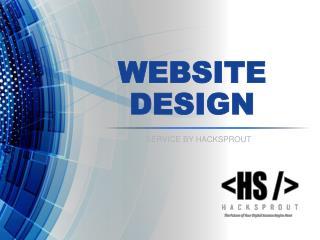 Website design service by Hacksprout Chicago