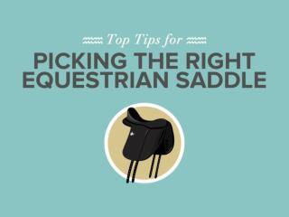 Top Tips for Picking the Right Equestrian Saddle