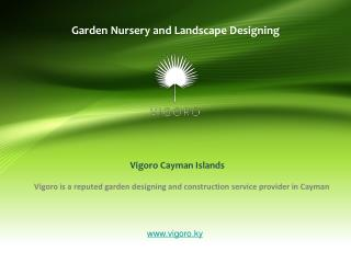 Creative Landscape Ideas to Transform Your Garden Area
