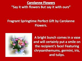 Fragrant Springtime Perfect Gift by Carolanne Flowers