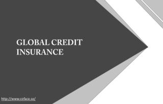 Ways in which global credit insurance can be beneficial to companies