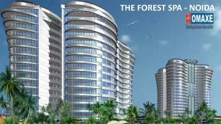 Buy Penthouse in Noida
