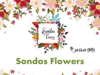 Flowers online store in Kuwait