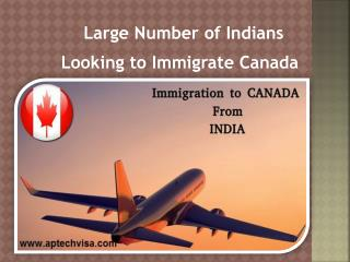 Large Number of Indians Looking to Immigrate Canada