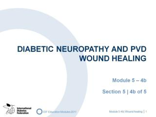 Diabetic neuropathy AND PVD Wound healing