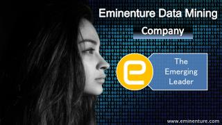 Eminenture Data Mining Company-The Emerging Leader