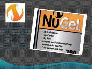 Pure Collagen Hydrolysate Beef Gelatin