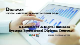 Digital Business Systems Professional Diploma Course Delhi  : Digigyan.in