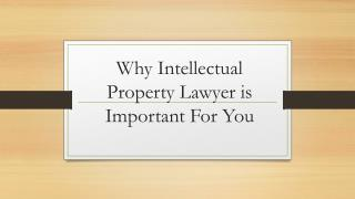 Why Intellectual Property Lawyer is Important For You