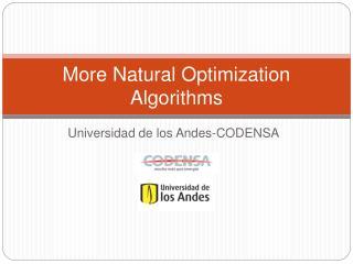 More Natural Optimization Algorithms