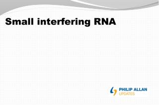 Small interfering RNA