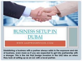 Pro Services Dubai