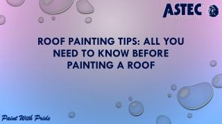 Roof Painting Tips: All You Need to Know Before Painting a Roof