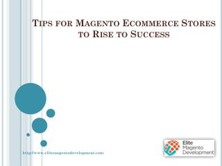 Tips for Magento Ecommerce Stores to Rise to Success