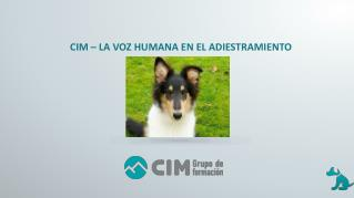 CIM Formación: La voz humana en el adiestramiento