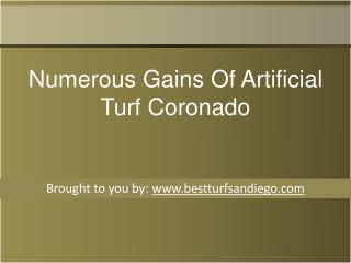 Numerous Gains Of Artificial Turf Coronado