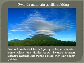 Rwanda mountain gorilla tours