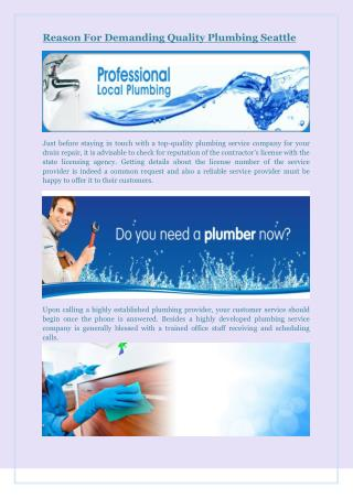 Reason For Demanding Quality Plumbing Seattle
