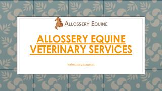 Allossery Equine Veterinary Services