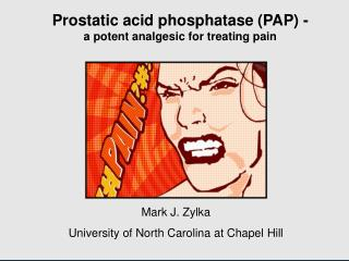Prostatic acid phosphatase PAP -     a potent analgesic for treating pain