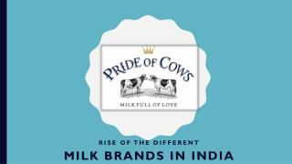 Rise of the different milk brands in India